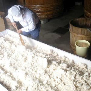 塩麹製造過程