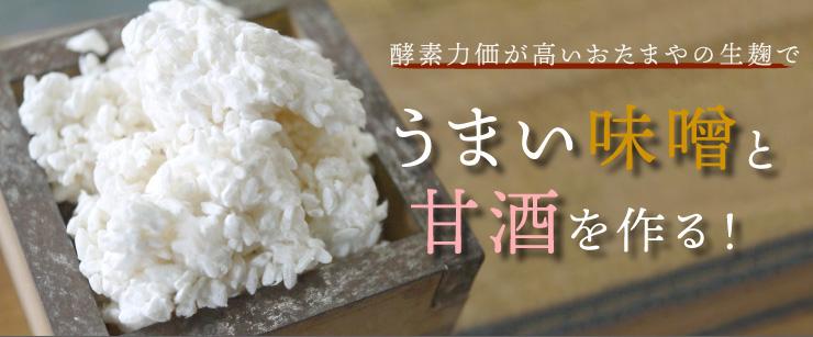 米麹・生麹
