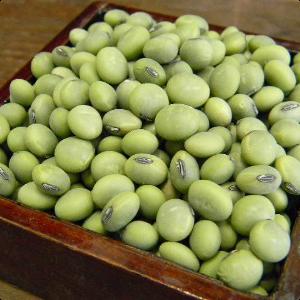 山形県産「青肌豆」「秘伝豆」