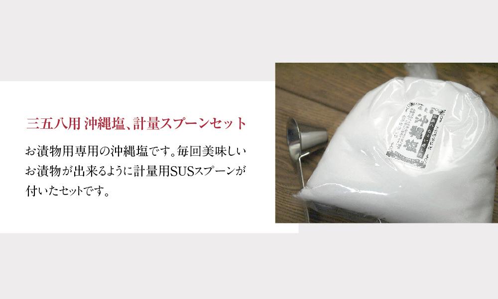 三五八用沖縄塩計量スプーンセット