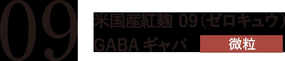 米国産紅麹 09(ゼロキュウ)GABA ギャバ 微粒