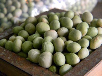 秘伝豆 中粒(10kg)