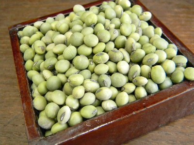 青肌豆 小粒(10kg)