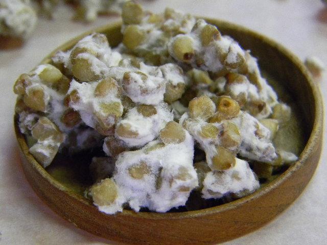 蕎麦麹 生麹(1kg)
