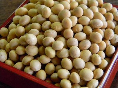 味噌用大豆 A品(1kg)