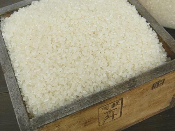 上白米 うるち米(5kg)