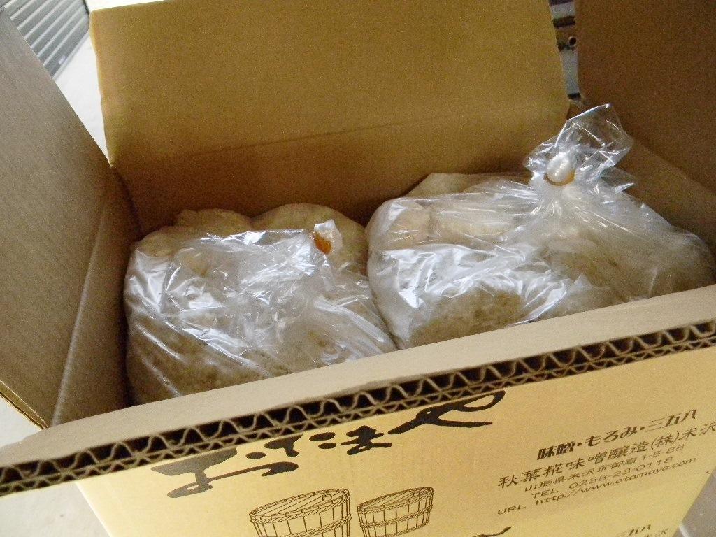 甘酒麹 生麹(5kg×2個)