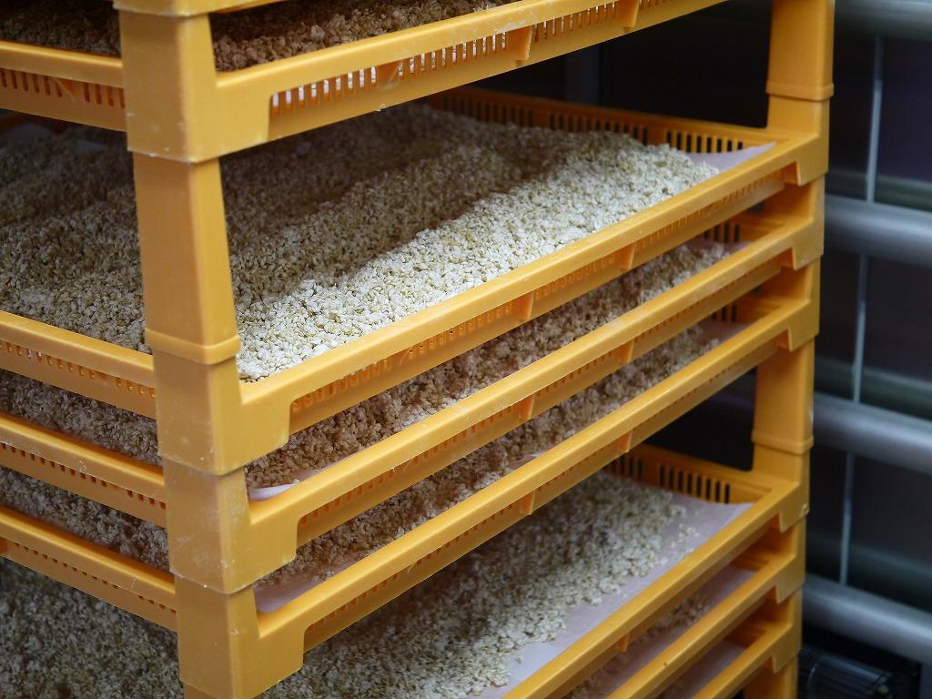 乾燥玄米麹 乾燥麹(10.5kg)