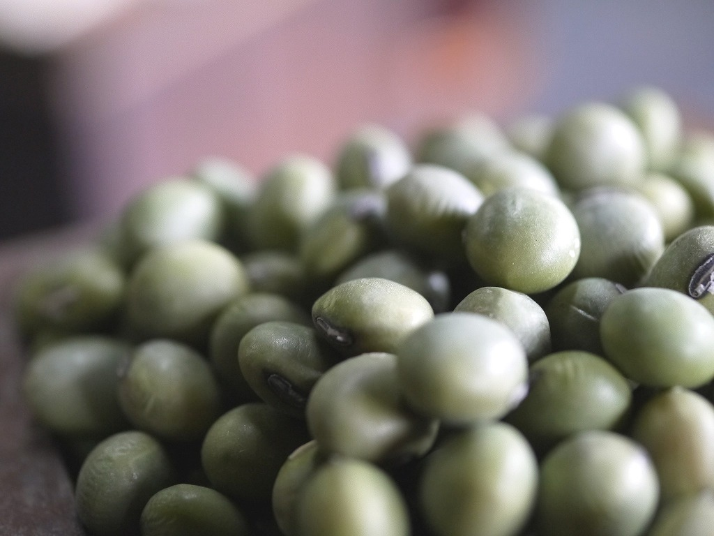 青肌豆 中粒(1kg)
