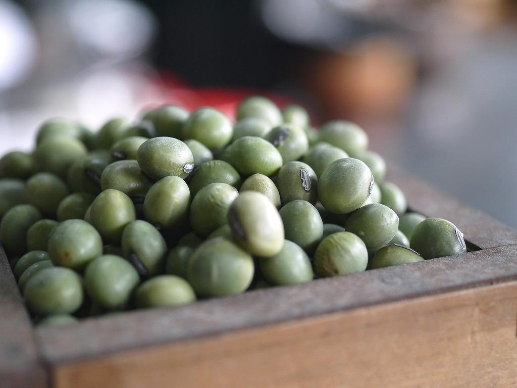 青肌豆 中粒(3kg)