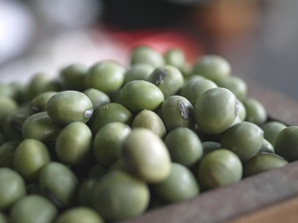 青肌豆 中粒(10kg)
