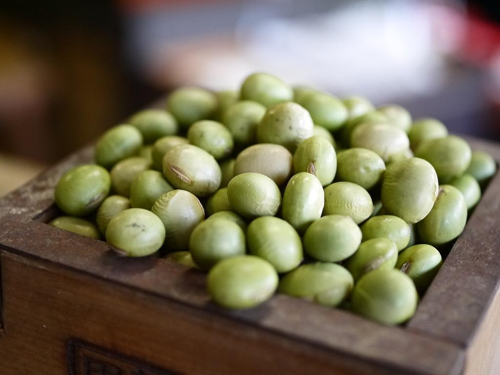 手作り味噌セット 秘伝豆(20Lポリ樽付 こだわり食塩)