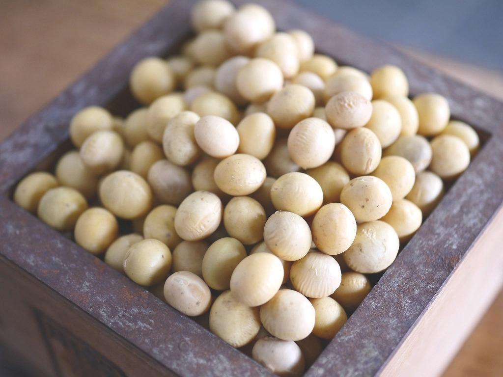 味噌用大豆 里のほほえみ(1kg)