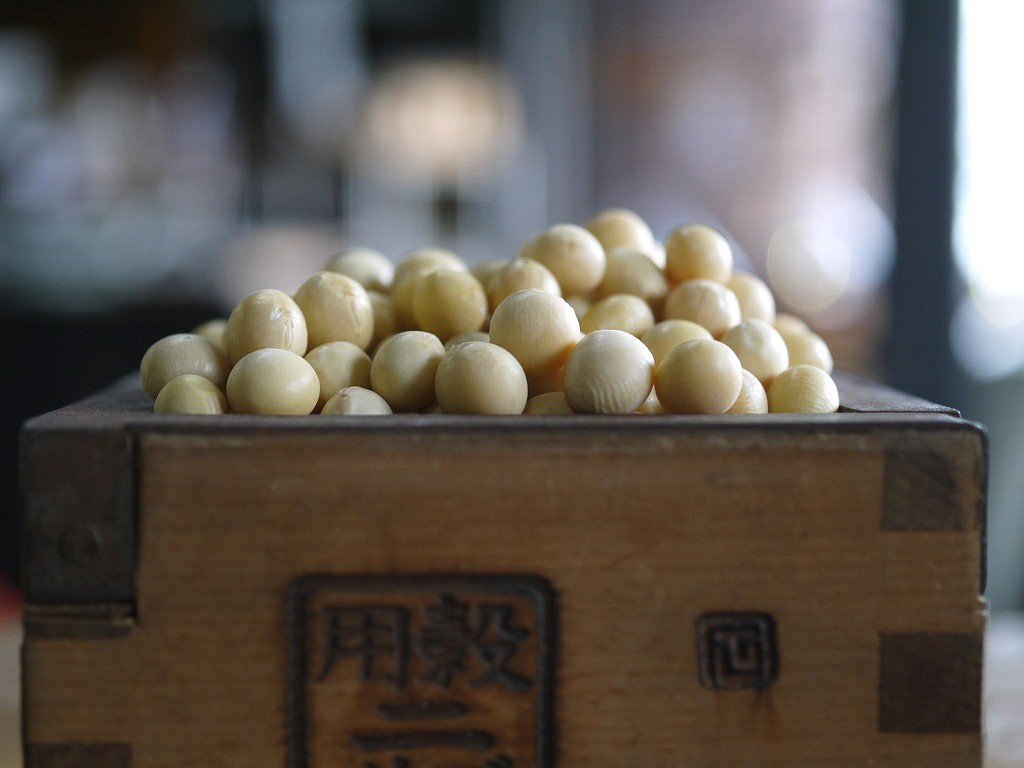 北海道大豆 雪譽 特選(3kg)