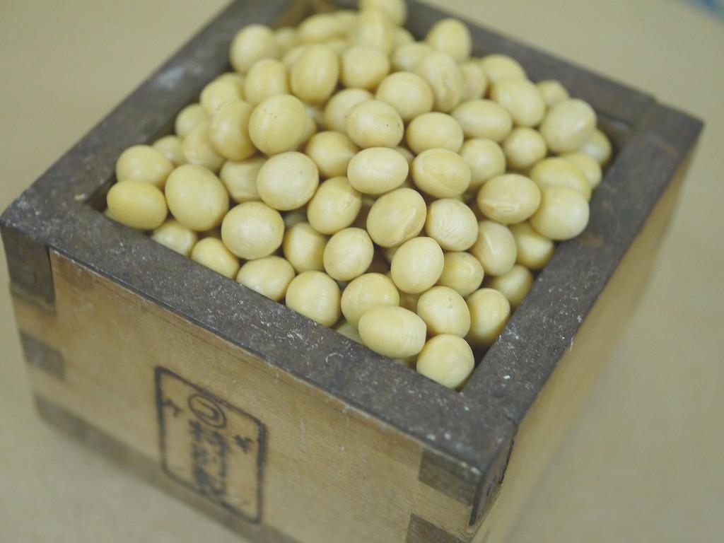 味噌用大豆 里のほほえみ(7kg)
