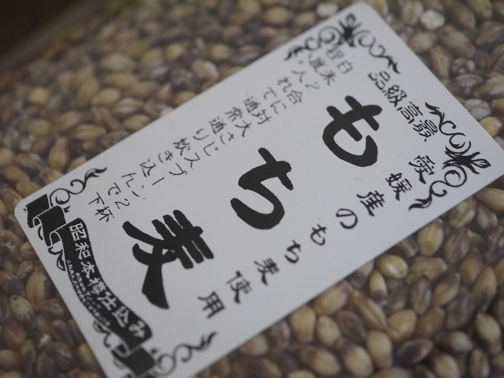もち麦 ダイシモチ 紫(5kg)