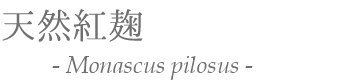 天然紅麹 Monascus pilosus