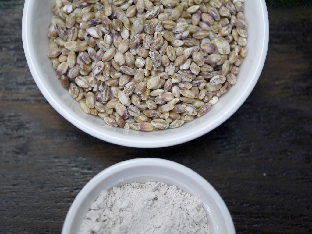 もち麦パウダー(100g)
