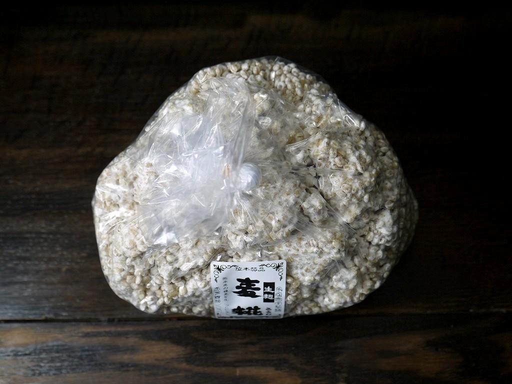 大麦麹 生麹(1kg)