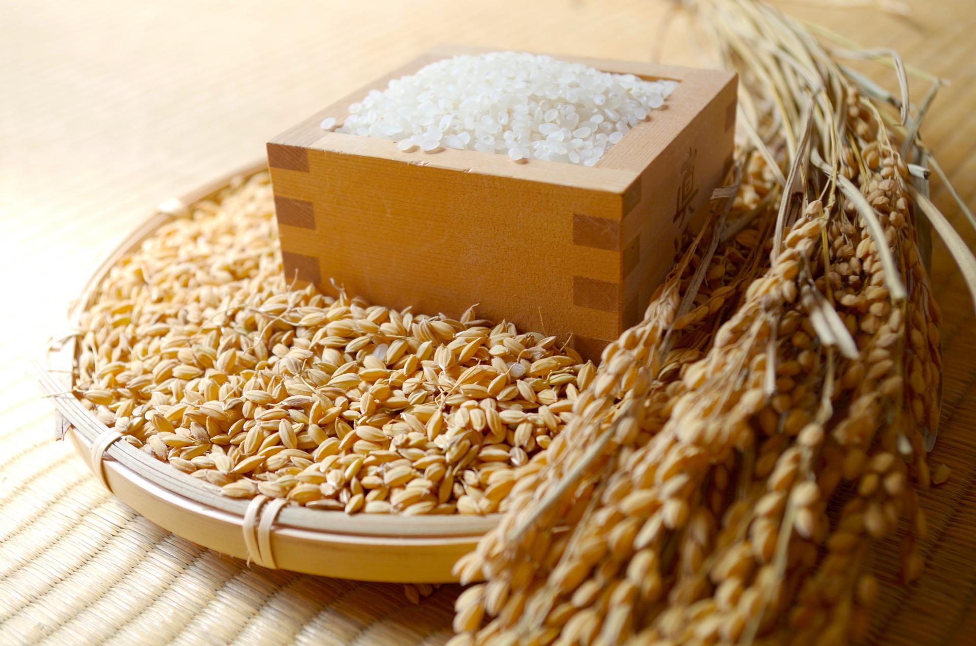 特別栽培米 山形県産 つや姫 米 5合(750g)送料無料