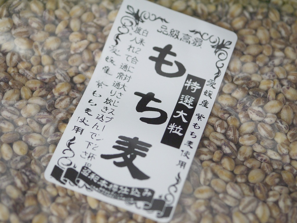 もち麦 特選大粒 ダイシモチ 紫(800g)送料無料