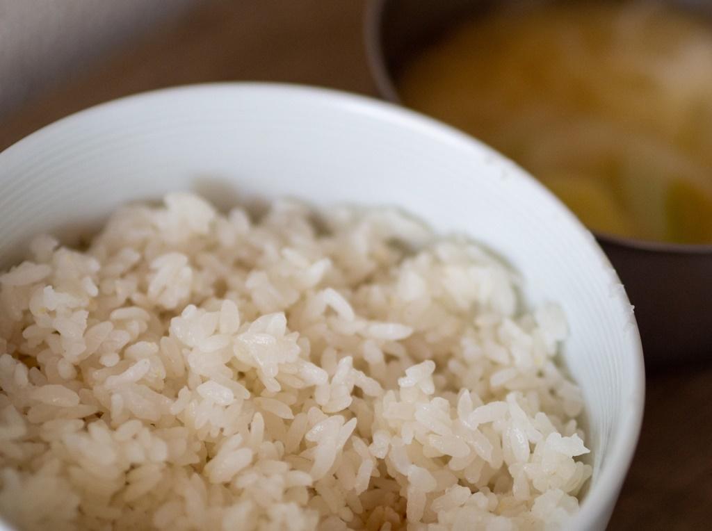 無農薬 有機肥料 令和2年産 コシヒカリ1升 玄米(1.5kg)