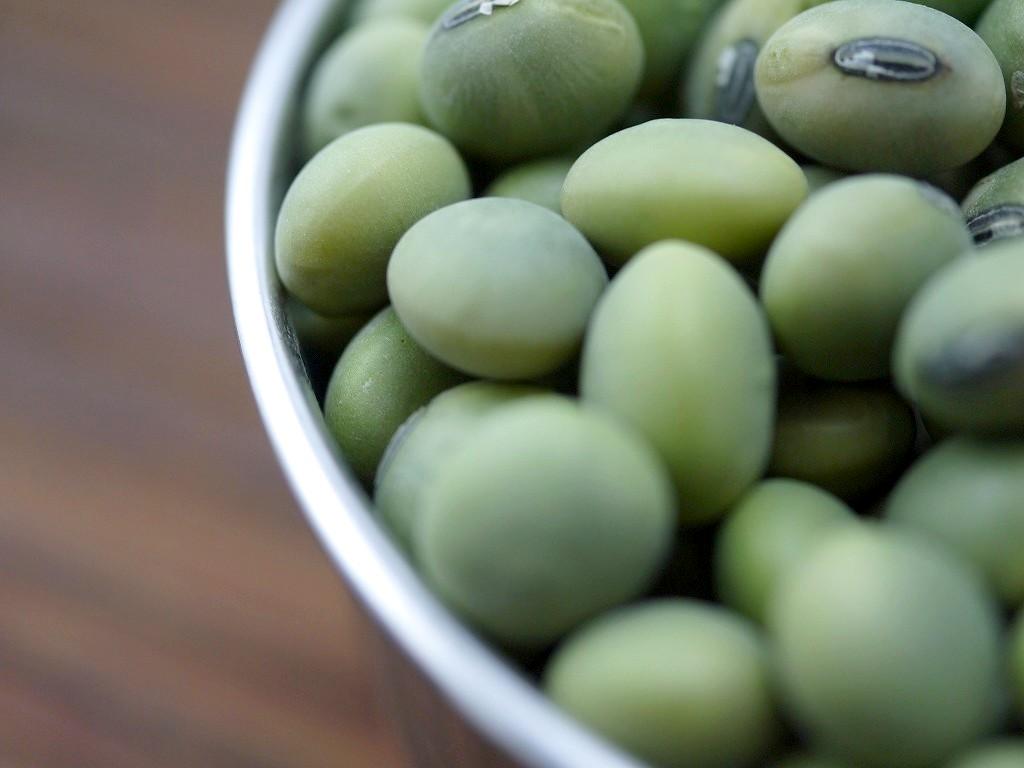 【訳あり】青肌豆 大粒 30kg詰