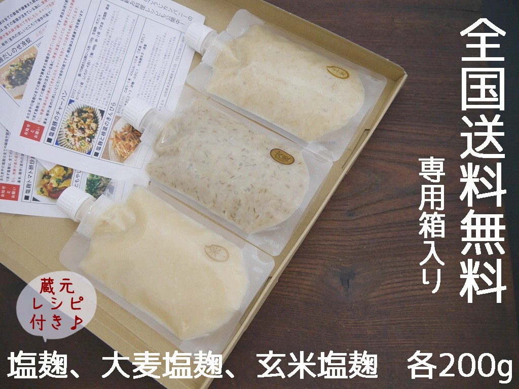生塩麹 3種おためし(200g×3本)送料無料 同梱不可 お試し ネコポス