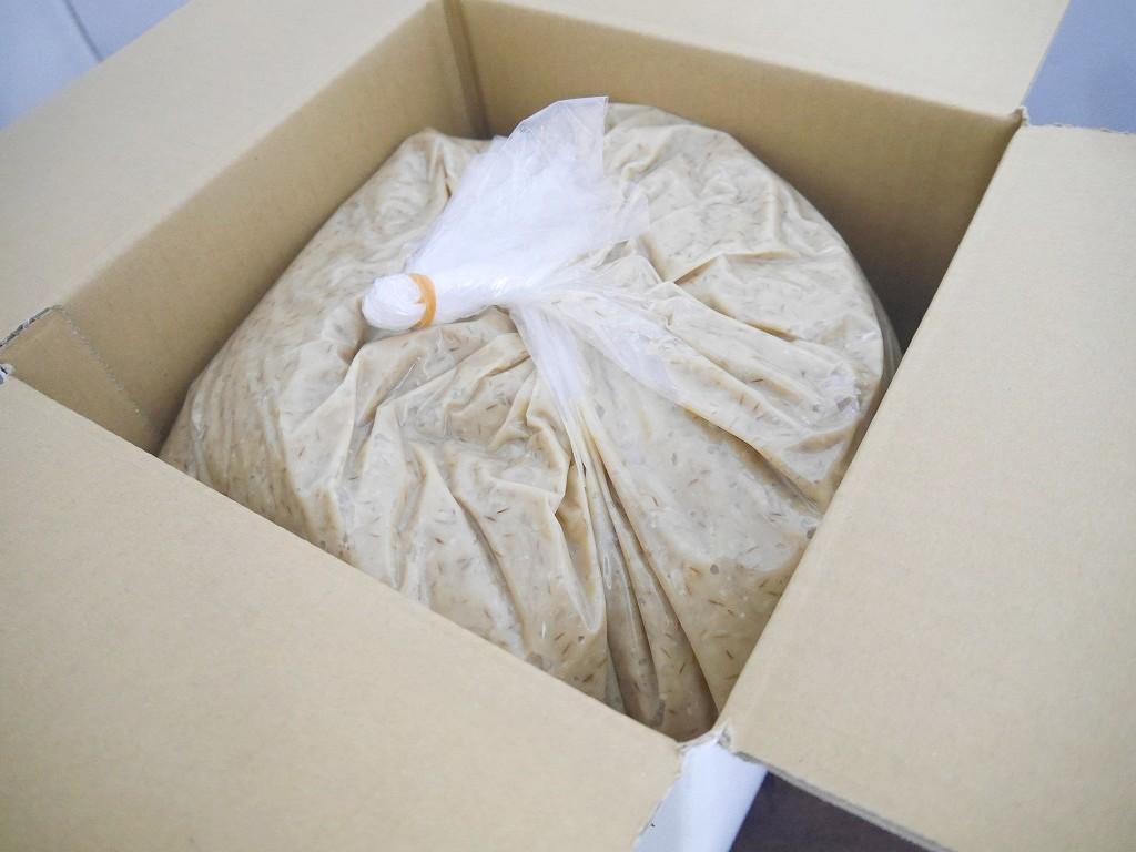 大麦塩麹(10kg)